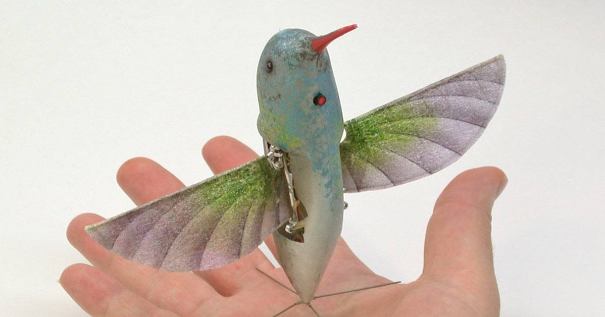 Drone beija-flor da DARPA
