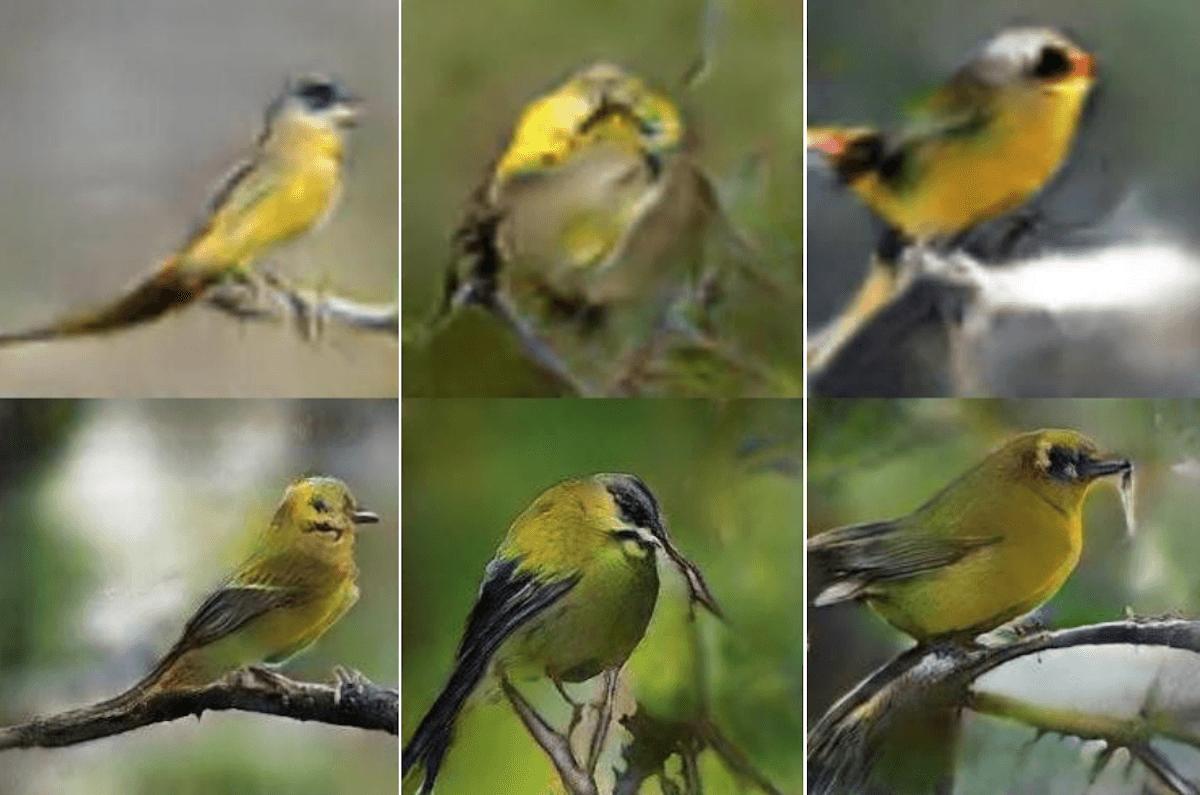 Imagem de pássaro gerada por um GAN através de interpretação de texto