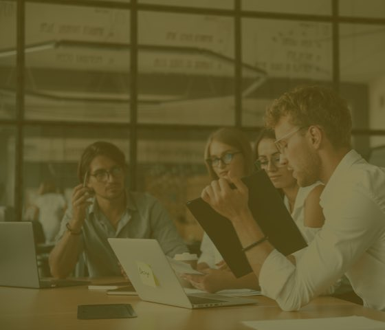 Online Product Manager Training